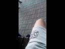 виолла в парке