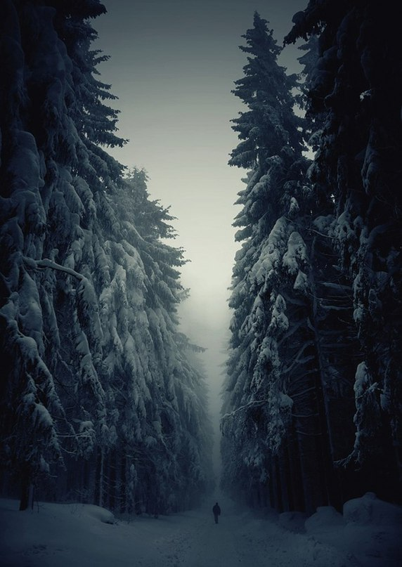 Игорь Salat | Гродно