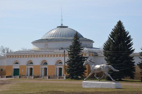 Знаменитый Хреновской конезавод, основанный в 1776 году сподвижником Екатерины II графом Алексеем Орловым-Чесменским, известен тем, что именно здесь выведена легендарная орловская рысистая порода лошадей, признанная национальным достоянием России