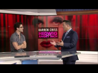 Darren's interview on ABC 7 on November 9th, 2016