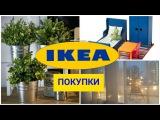 🛍😍IKEA ПОКУПКИ/ 🍽ИКЕА ПОКУПКИ ДЛЯ КУХНИ/🛋 IKEA HAUL
