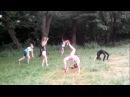 25.06.17 акробатический коллектив. Самоотработка(перевороты, маховое, прыжки) Трене