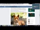 Востребованная онлайн профессия Администратор ВКонтакте Как освоить Пошаговая инструкция