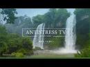 Водопад и 1 час инструментальной музыки. Релакс видео для медитации, релаксации...