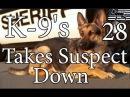 K 9's Takes Suspect Down 28
