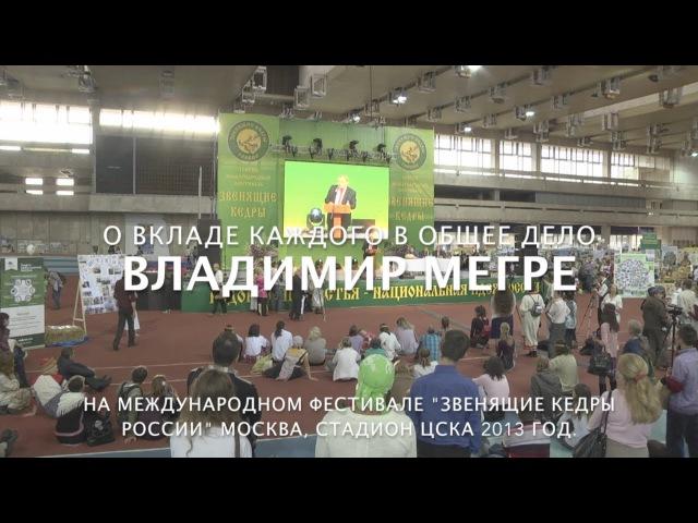 Владимир Мегре о вкладе каждого человека в общее дело.