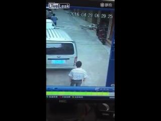 Отец отбивается от трех злобных собак, чтобы спасти сына