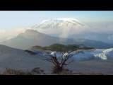 Гора Килиманджаро. Африка.
