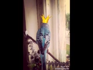 Царь Кроша