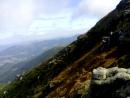Карпати вид з гори Вухатий камінь