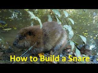 Snare School: Episode 2 How to Build a Snare
