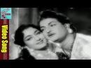 Nee Raju Pilichenu Video Song    Mangamma Sapatham Movie    NTR, Jamuna, Vanisree    MovieTimeCinema