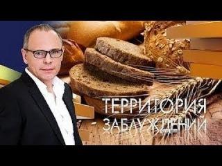 Территория заблуждений с Игорем Прокопенко (HD 1080p) 23.01.2017.