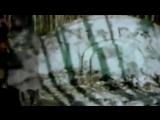 5 ЗАГАДОЧНЫХ ВЕЩЕЙ ИЗ АРХИВА КГБ СНЯТЫХ НА КАМЕРУ [Черный кот]