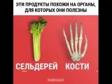 Некоторые продукты похожи на органы, для которых они полезны