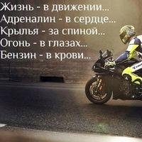 Мира Музыко