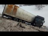 ДТП, авария фура с белыми тиграми под Оренбургом (Ифктфгд22)