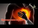 Проверь свое сердце! НОВИНКА