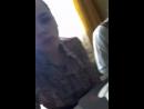 Екатерина Брель - Live