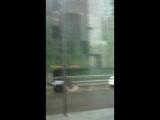 Ураган в Москва-сити 29.05.2017