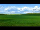 Луга и поля под голубым небом. Футажи для видеомонтажа. Зеленые Поля, Зеленые Луга ( 720 X 1280 ).mp4