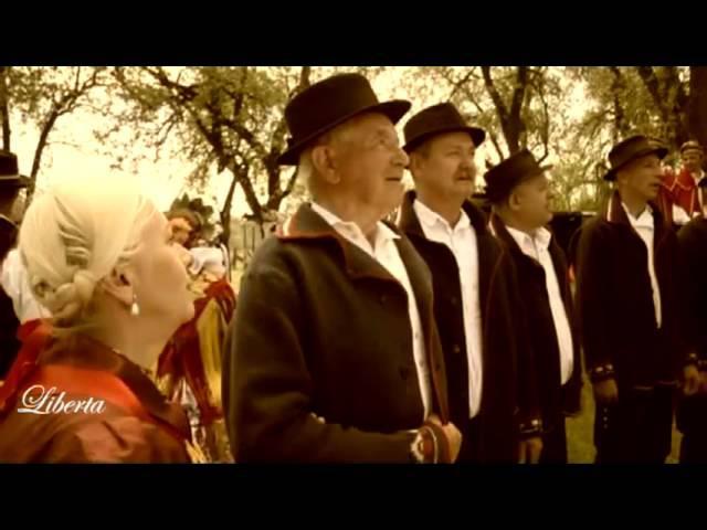 Slavonija,Srijem i Baranja ~ Tamburaški Band Aid