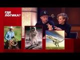 Где логика?: Дмитрий Романов и Кристина Талызина vs. Гарик Рудник и Ульяна Пылаева...