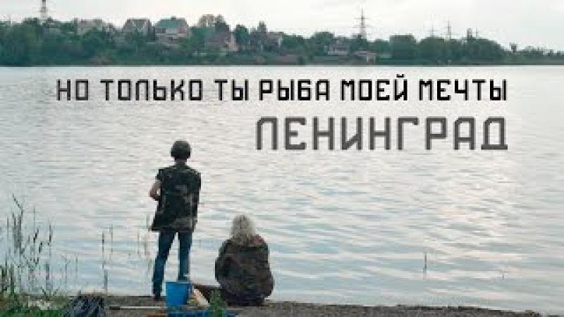 Ленинград Но только ты рыба моей мечты Не официальный клип