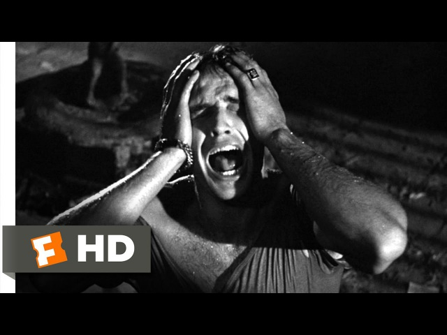A Streetcar Named Desire 3 8 Movie CLIP Stella 1951 HD