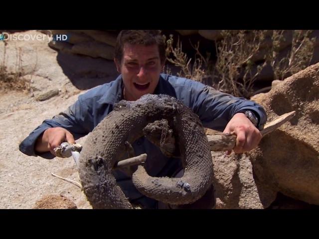 Выжить любой ценой - Намибия (Африка) HD 1080