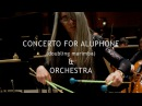 Anders Koppel Concerto for Aluphone Orchestra