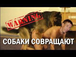 Ебля с собаками