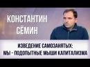 Константин Сёмин Изведение самозанятых мы подопытные мыши капитализма