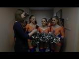 Факультет психологии. Студенческая Весна ЯрГУ 2017. Конкурс Видеорепортажей.