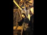 Аделаида на Эйфелевой башне в Париже, Франция [06.01.2017]