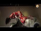 ШИБАРИ - японское искусство связывания