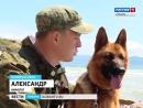 На страже границ Кубани — четвероногие бойцы