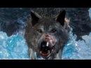 ВОЛЧАРА ► Dark Souls 3 Ashes of Ariandel 4