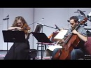 Pantera's Cowboys From Hell on violin and cello