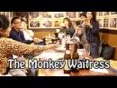 The Monkey Waitress 猿が接客する居酒屋「かやぶき」