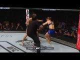 UFC 207 - Mike Goldberg's final