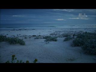 2-5. Неизведанные острова - Фолкленды - Пингвиний рай