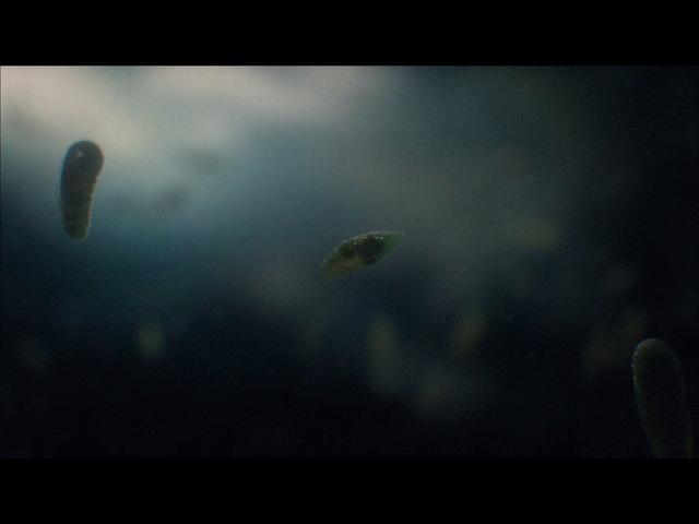 02. Космос: Пространство и время - Молекулы