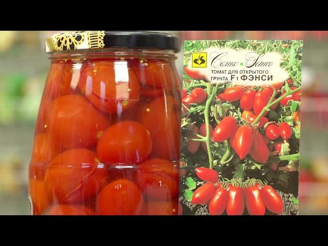 Скороспелые томаты для консервирования
