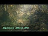 Megalomania- Siberia (MP4)