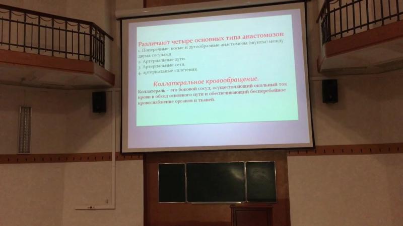 Лекция по анатомии введение в ангиологию система микроциркуляции