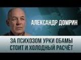 Александр Домрин.