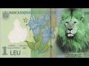 De ce se cheamă leul LEU şi nu LUP