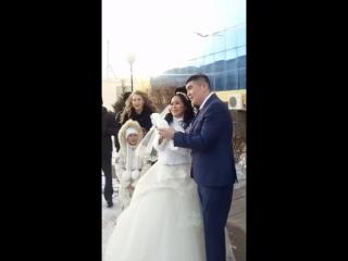 ох уж эти голуби))