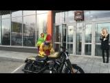 Масленица в Harley-Davidson Новосибирск